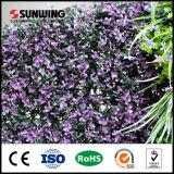 Artificiel jardin vertical mur vert avec protection UV