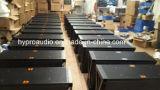 """Xlc127 12 """" het Systeem van Loundspeaker van de Serie van de Lijn"""