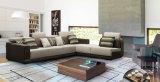 Insieme moderno del sofà del tessuto di disegno della mobilia