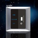 Schalter-Metallmaterial des Decoder-MP3 (SK-AP2001)