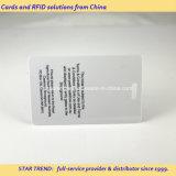 Cartão de Acesso de exposições de plástico com slot perfurado para Corda