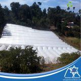 Tissu non-tissé traité aux UV de pp pour la couverture de collecte d'agriculture