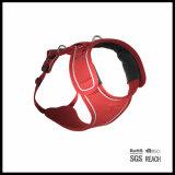 Air Mesh Gato respirável Não puxando o gancho Harness Easy Walk Comfy Harness