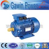 Motor de inducción trifásico de calidad superior del arrabio de la serie Y2