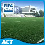 Erba artificiale della FIFA per il fornitore di calcio per la Russia Argentina