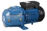 0.5HP Pomp van het Water van de Kleur van de Draad van het koper de Elektrische Rand Blauwe Ondiepe goed Straal