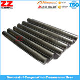 Zhuzhou 최신 판매 고품질 단단한 Unground 텅스텐 탄화물 로드