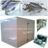 Vendendo a caminhada congelada única porta dos peixes no armazenamento frio do congelador