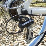 Bicicleta elétrica do estilo poderoso quente da praia da venda (RSEB-1215)