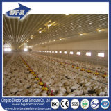 ケニヤの鶏の層の家か養鶏場