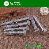 Boulon d'anchrage de cale d'acier inoxydable d'A2 A4 (SS304 SS316)