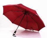 De Hand Vouwende Paraplu van uitstekende kwaliteit