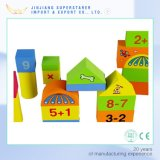 아이 장난감 아이를 위한 나무로 되는 빌딩 블록 자석 구획을%s 나무로 되는 빌딩 블록