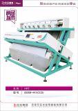 Hefei에서 질 밥 색깔 분류하는 사람 기계, 안후이 의 상표는 Hongshi이다