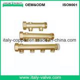 Le laiton personnalisé de qualité a modifié la tubulure (IC1007B)
