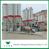 Weighbridge 120t Plant Cement électronique