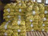 Fournisseur d'or en Chine de pommes de terre fraîches (100-200g)