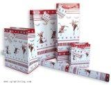 Série de sac de papier de cadeau (SG-PB08)