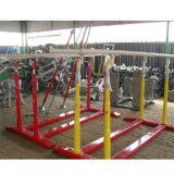 De Internationale Standaard Parallelle Staaf van uitstekende kwaliteit van Gymnastiek- Apparatuur voor Verkoop