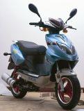 Ес одобрил скутер (HL50QT-13)