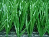 Футбол травы