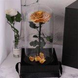 Véritable naturel préservé Big rose fleur fraîche préservé Roses réel éternelle dans le dôme de verre pour la vente