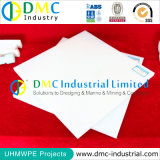 Strato di assorbimento di acqua di livello basso di industria chimica con i piatti di plastica di UHMWPE