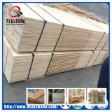 Tablero de contrachapado de tablones de pino de pino LVL para vigas y paleta