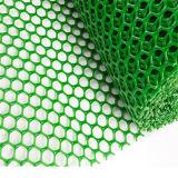 Grüne Farbe verdrängte das normale Plastiknetz, das in China hergestellt wurde