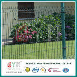 Le curvature triangolari hanno saldato la rete fissa della rete metallica della rete fissa della rete metallica/del giardino