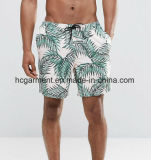 Colorida Shorts para o homem, desgaste da placa do Swimwear do Beachwear da praia