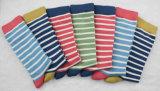 Chaussettes rayées de coton pour des femmes et des hommes
