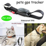 2017 Nouvelle carte en temps réel de l'emplacement GPS Pet Tracker (EV-200)