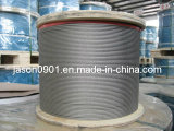 AISI 304 & AISI 316 Stainless Steel Wire Rope (15 년의 경험, 유럽에 80%)