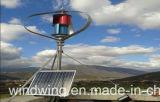 WegRasterfeld 1000W Maglev vertikaler Mittellinien-Wind-Turbine-Generator (200W-5kw)