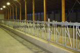 Оцинкованные Strong крупного рогатого скота Headlock с возможностью горячей замены