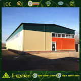 SGS Approuvé Lingshan Modern Light Steel Structure Workshop (LS-002)