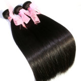 膚触りがよくまっすぐなインドのRemyの毛のもつれの自由な毛の束