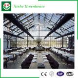 Groene Huis van het Glas van de Spanwijdte van de landbouw het Multi voor Groenten