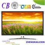 "32"" D-LED TV/32"" телевизор со светодиодной технологией"
