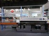 De Chinese In het groot Machine van het Glas levert de Scherpende Machine van het Glas van 10 Wielen