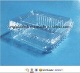La Cina Supplier Good Quality Plastic Container per Food Fruit 1000gram