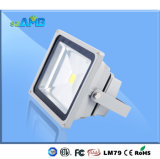 30W LED Flood Light