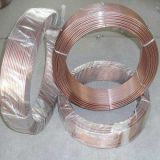 De Draad van het Staal van Galvanived voor het Maken van Spijkers. /Wire voor Spijkers die/de Draad van de Spijker maken