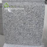 Tuile Polished de carrelage du granit G603