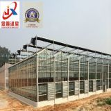 Greenhouse Intelligent Glass Greenhouse Vegetable Grower
