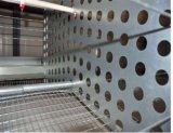 De automatische Apparatuur van het Landbouwbedrijf van de Kooi van het Gevogelte van de Kip voor Kweker (het frame van H) Poul Tech