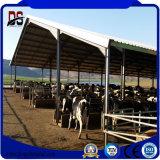 Prefab стальная дом скотоводческого хозяйства с аттестацией TUV