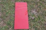 착색된 유리제 /Painting 유리제 실크 스크린 유리 (, 황색 백색, 까맣고, 빨강)