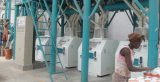 50t/24h Steel Structure Flour Milling Machine, Edelstahl Pipes